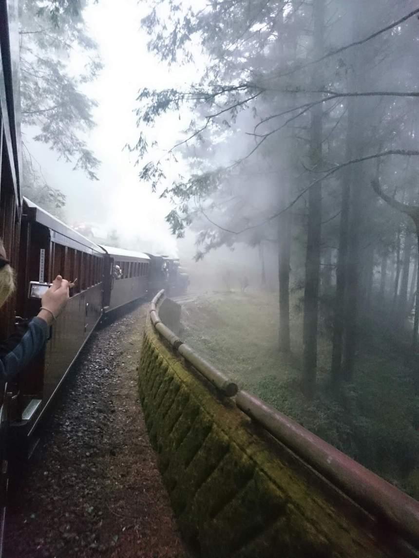 top 30 scenes of mytaiwantour_Alishan Train