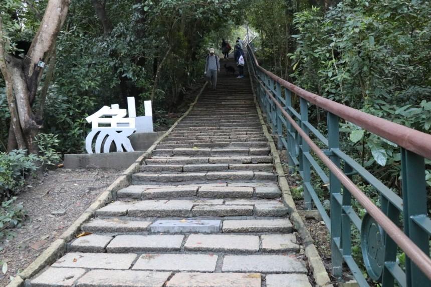 taiwan-scene-hiking-elephant-mountain-xiangshan-4